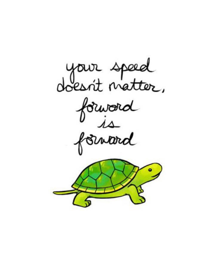 your-speed-doesnt-matter-forward-is-forward-turtle